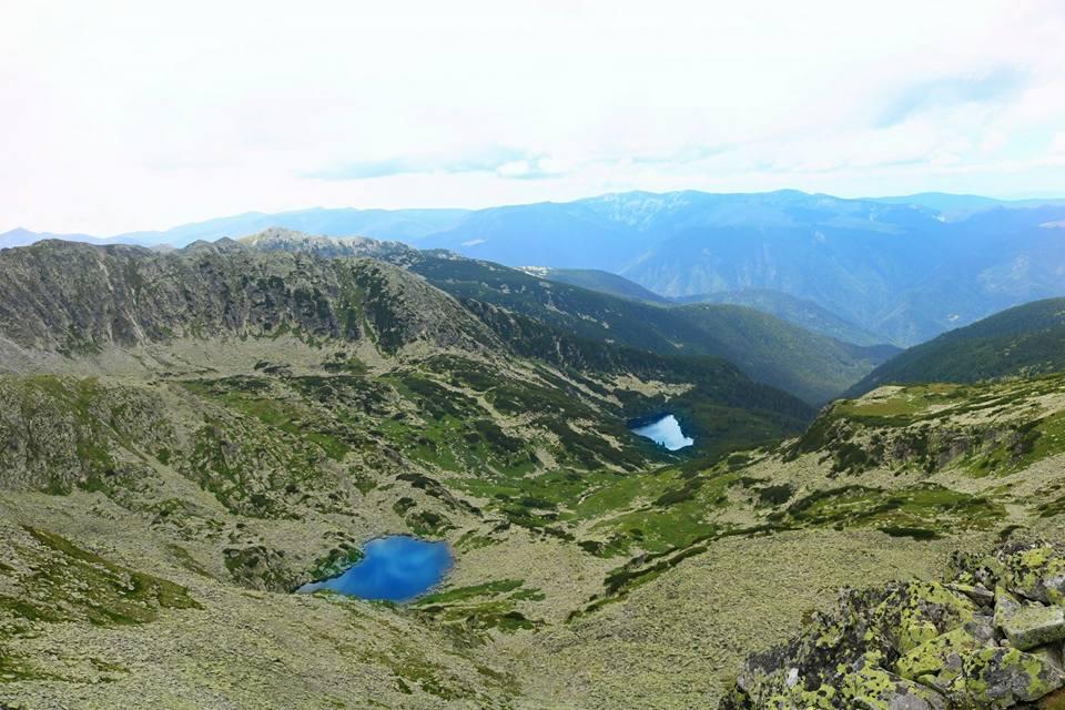 Rezervația științifică Lacul Știrbu și lacul Gemenele - Mugurel Neag