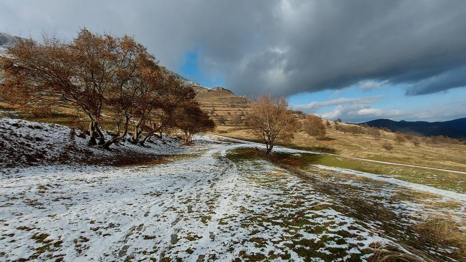 Ruginiul se impleteste armonios cu prima zăpadă - Manu Muntomanu