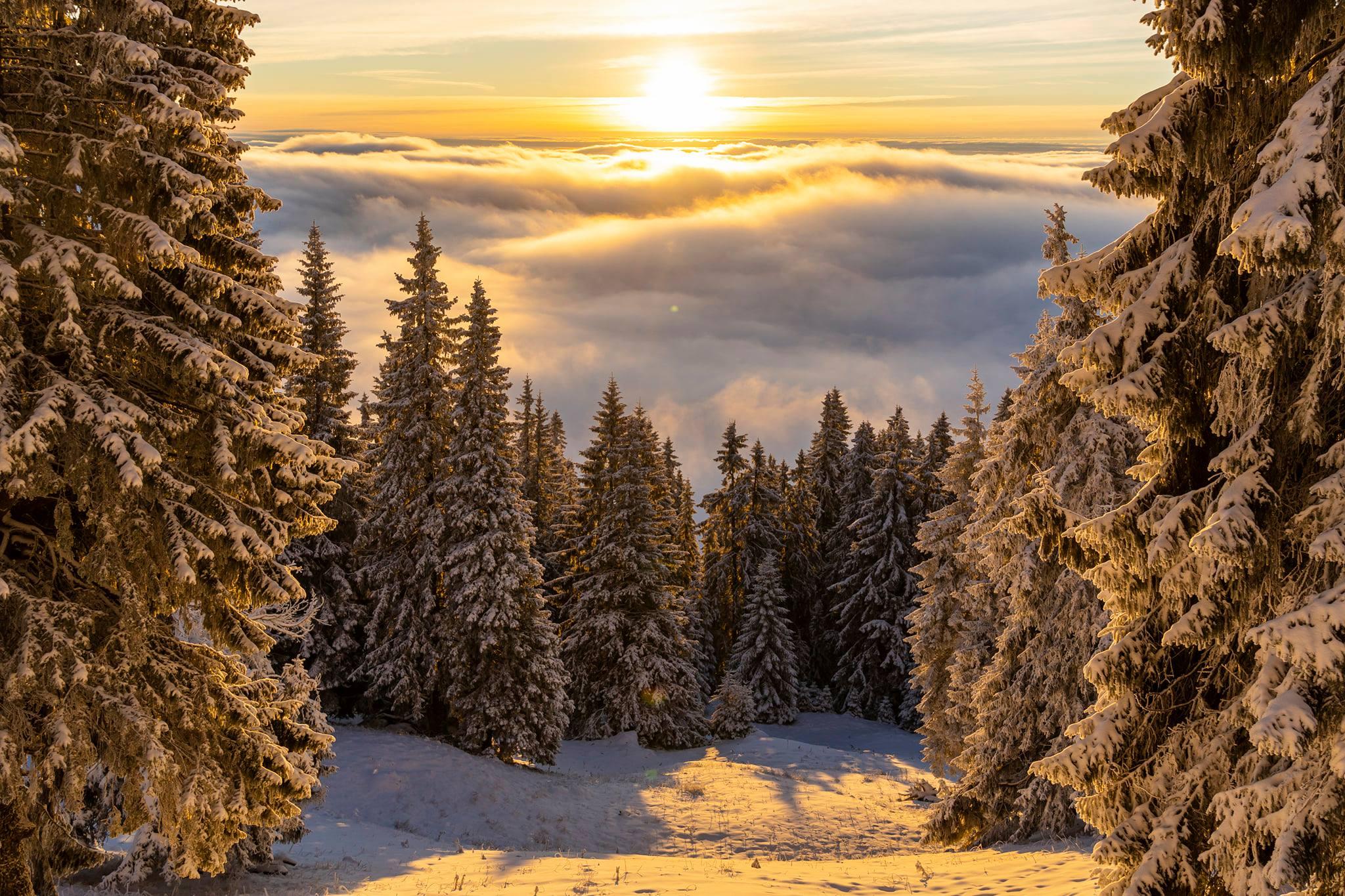 Soarele se ridică deasupra norilor - Andrei Pahomi