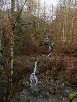08_Un afluent al Vaii Stanciului.JPG