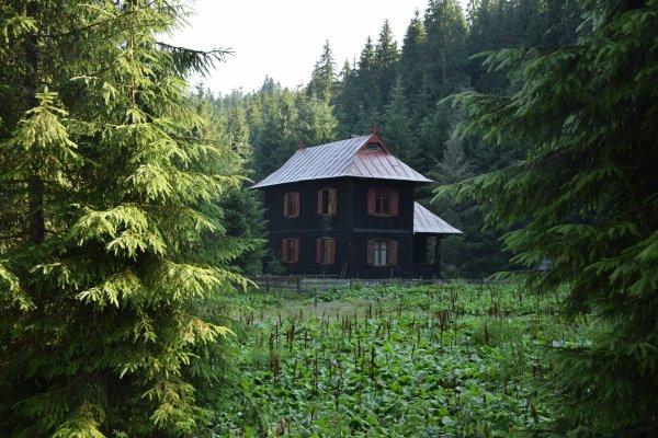 18 Cantonul Forestier Ciripa
