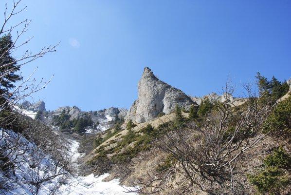 Pe valea Pârâului Alb sub Culmea Stâncoasă - 19.jpg