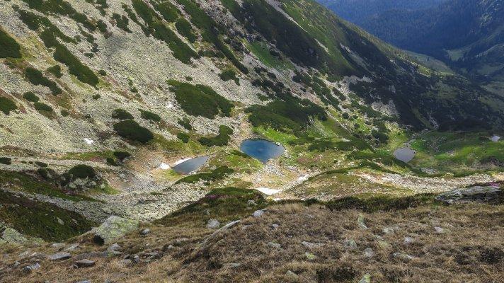 Taurile Buhaescului vazute din Curmatura Pietrosului - 07.jpg