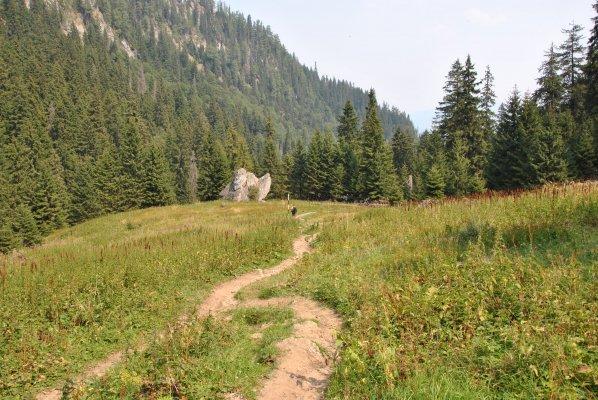 Valea Malaiesti - 2.JPG