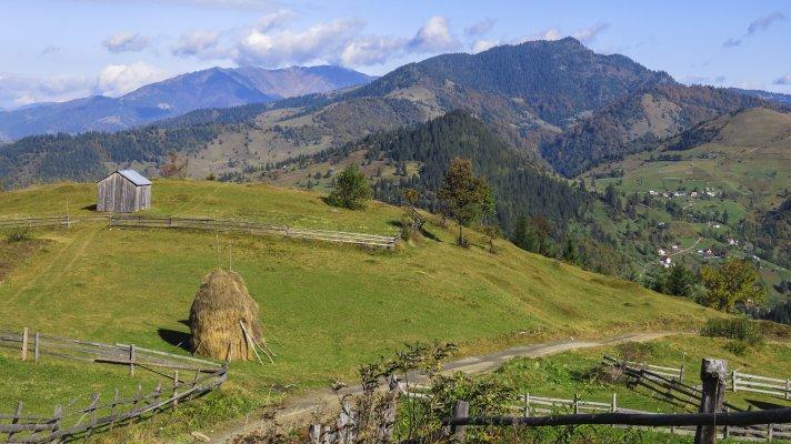 _3MN_Inspre-Muntii-Maramuresului-urcand-spre-Buza-Muntelui---05.jpg