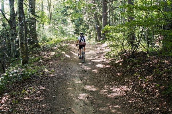 3mb in padure pe culmea sorica cu bicicleta - 16 res