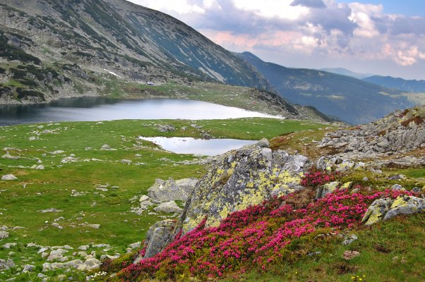 _6MN_img_Lacul Bucura si Lacul Bucurel - 01, 19, 25.jpg