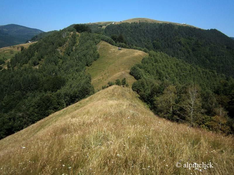 038-urcand-pe-dealul-runcului