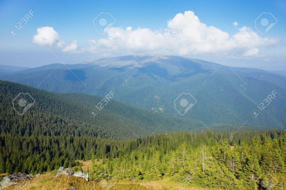 11808150-view-of-muntele-mic-in-tarcu-mountains-in-summer-romania-