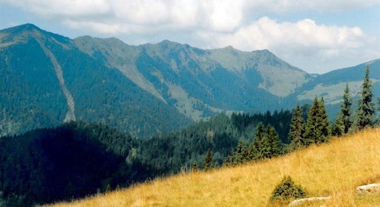 3-muntii-rodnei-nedeia-taranului-romania-natura-rabla-laptele-repede-negoiasa-puzdrele 0