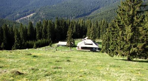 3 cabana plaiul poienii latoritei-romania-natura