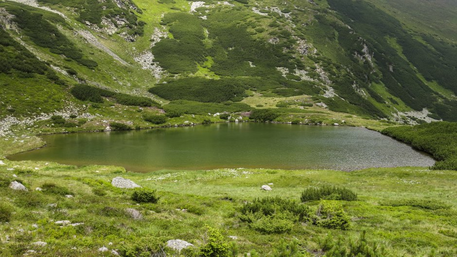 Lacul_Lala_Mare_-_02.jpg