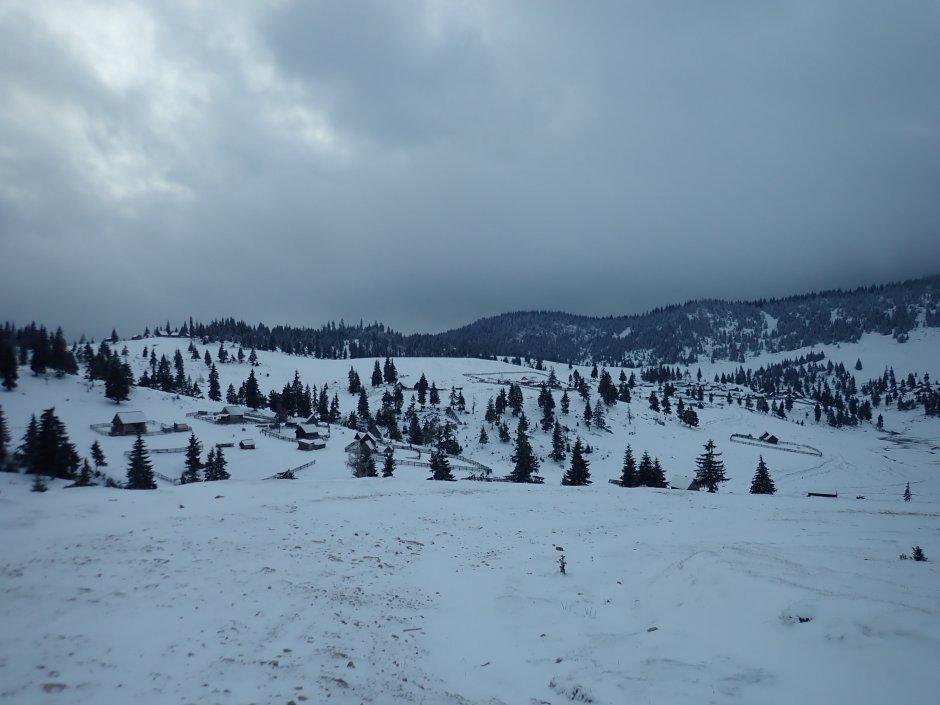 17mn img 66ba poaina calineasa iarna
