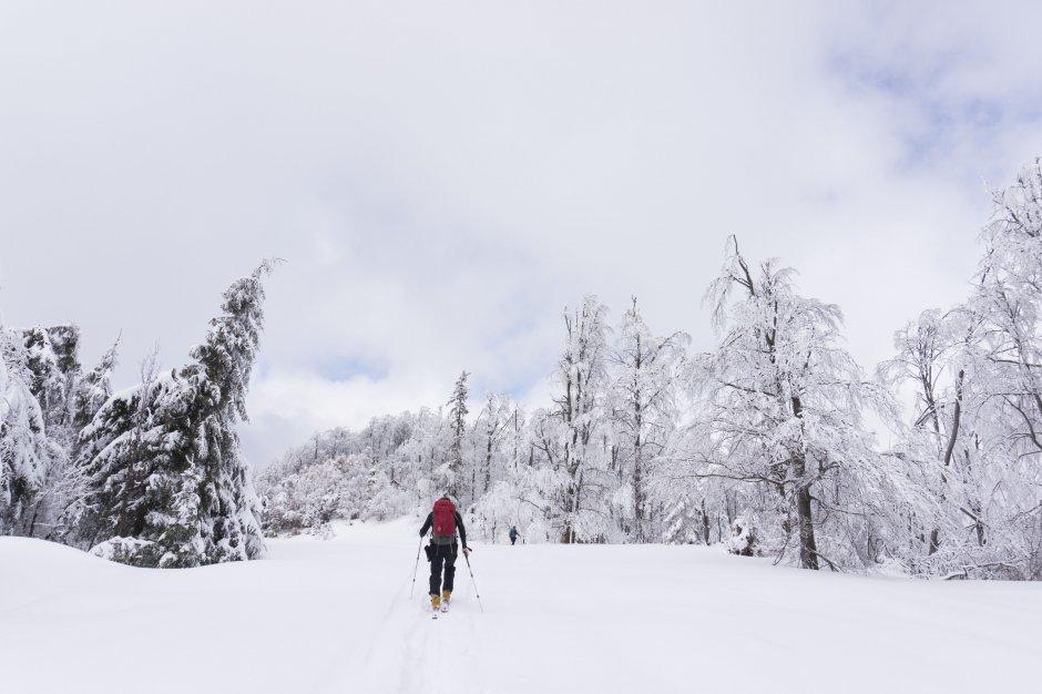 20mn img 05bg urcare pe schiuri spre gutaiul mic