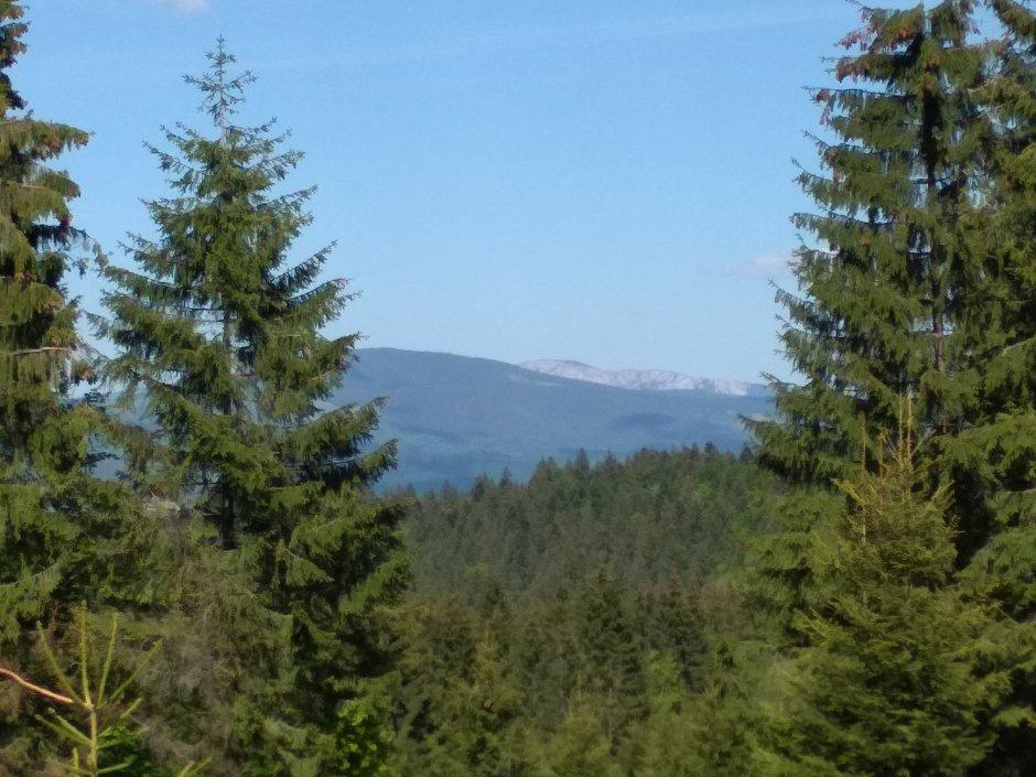 21mn img 57ca vedere spre muntii hasmasul mare
