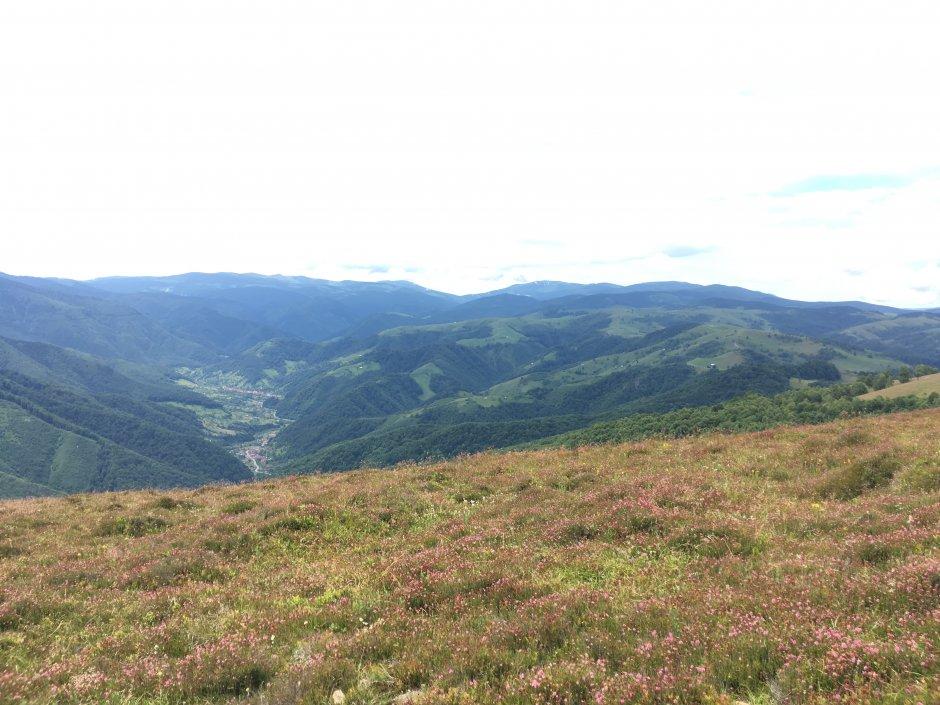 23mn img 09cr vedere spre valea sadului de pe magura