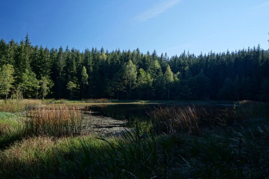 26mn img 36tr lacul negru din muntii penteleu