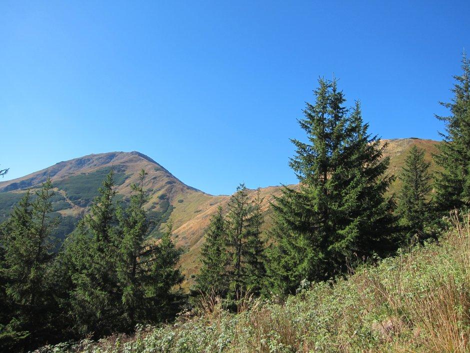 7mn img urcare din valea sebesului spre curmatura tiganului - 74