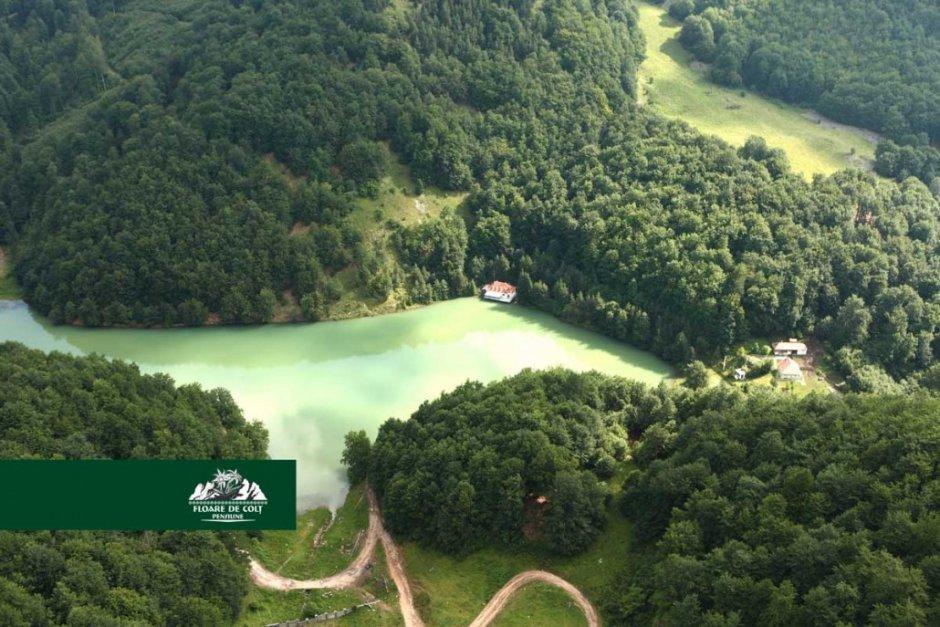 lacul-iezer-1030x687