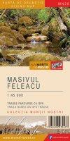 masivulfeleacul mn28 cover for facebook