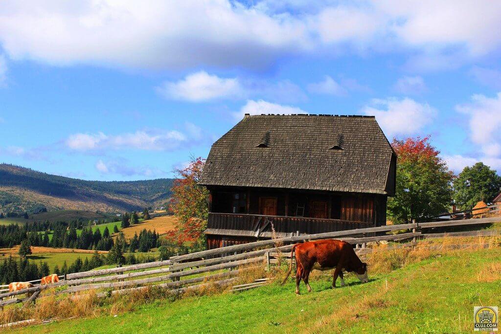 Muntele Rece - ClujCom