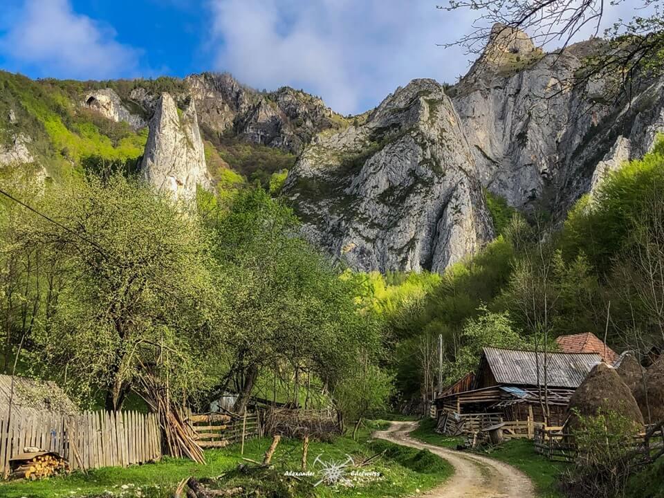Valea Belioara - Alexander Eldervweiss