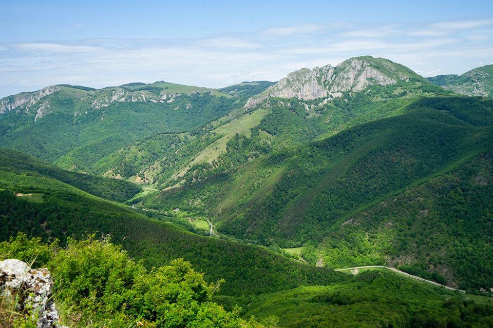 Valea Galdei - Cosmin Buzoianu