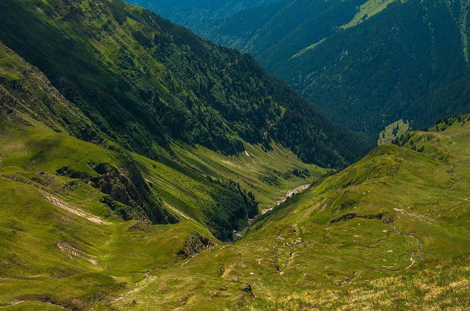 Valea Izvorul Moldoveanu -  Morar Daniel