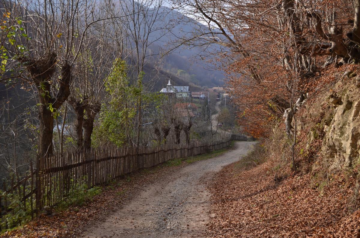 Valea Vadului - centrul de informare Floresti