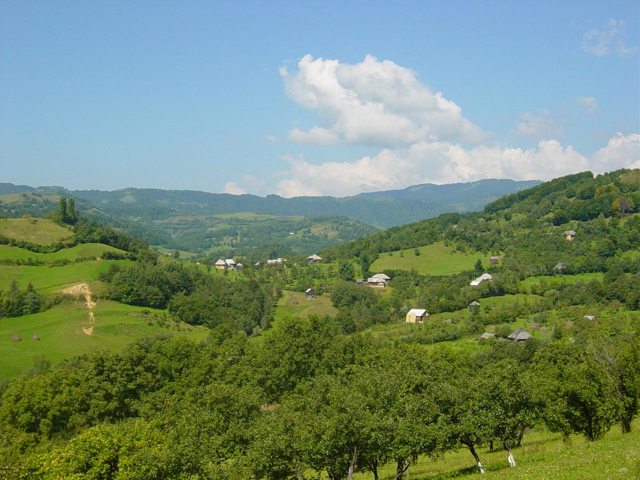 Valea Vinului, comuna Rodna - Wikipedia