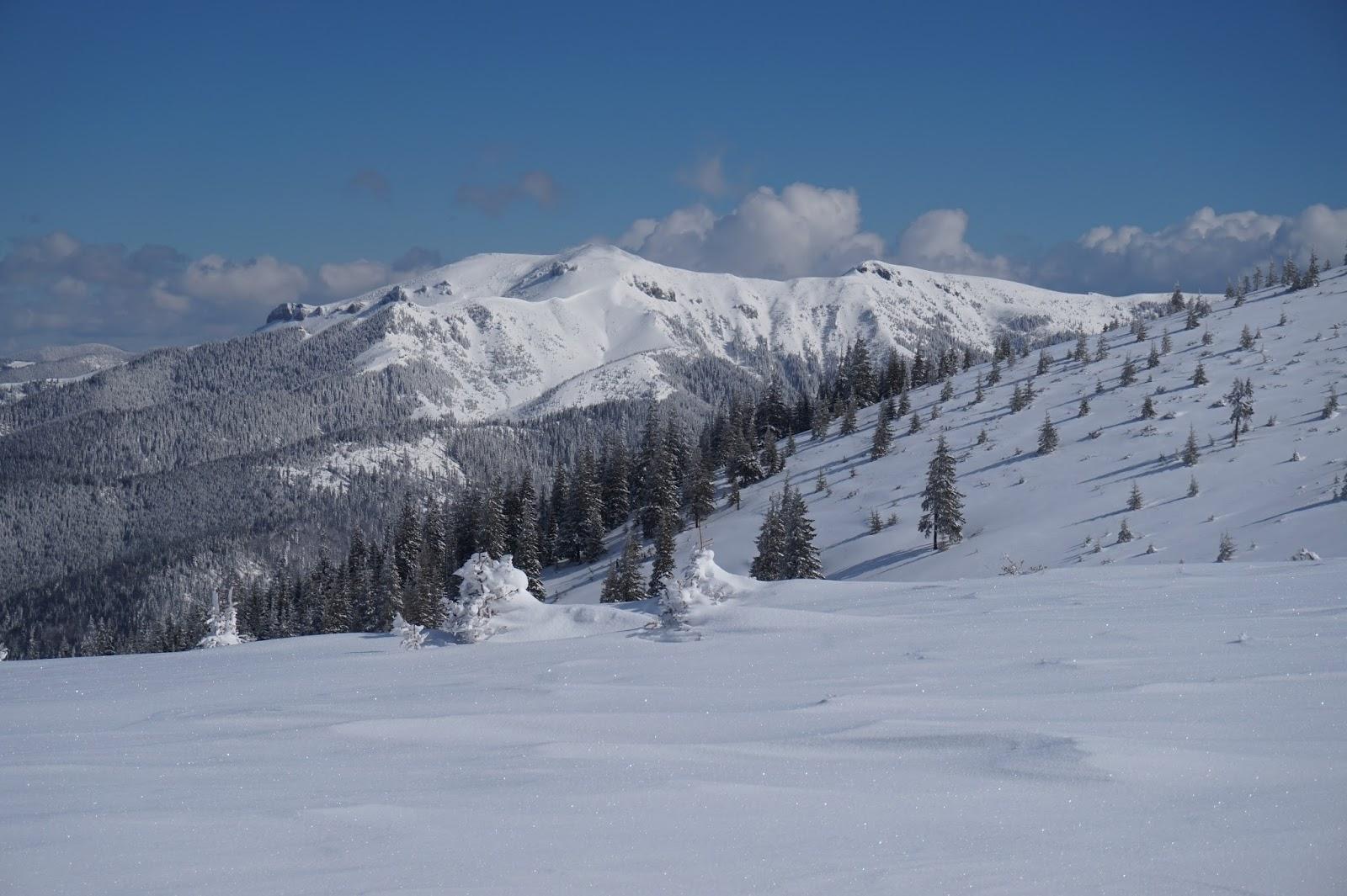Vedere spre Cearcănul, munții Maramureșului - Alina Cîrja