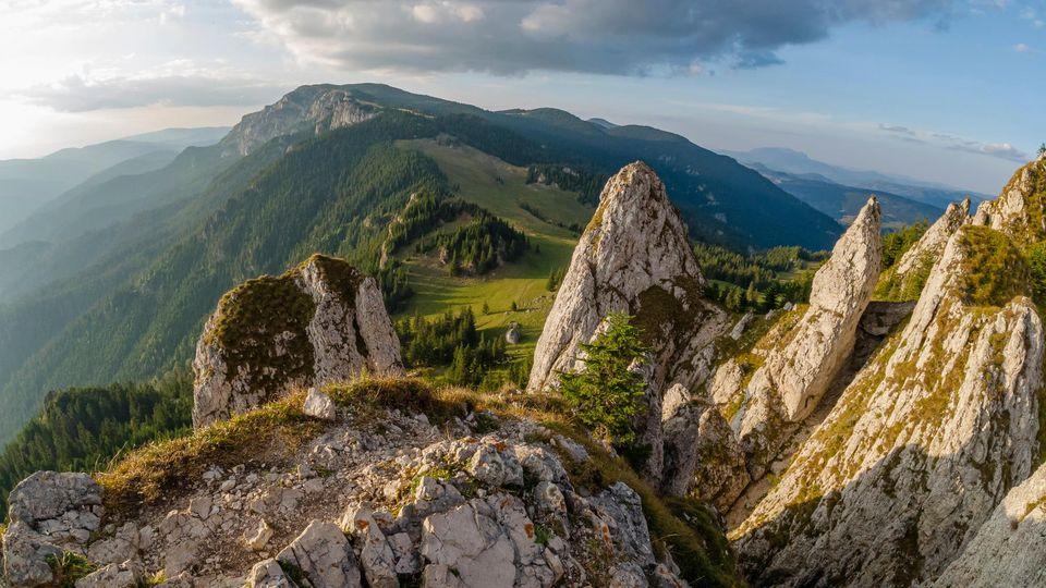 Vedere spre Hășmașul Mare - Andrei Pahomi