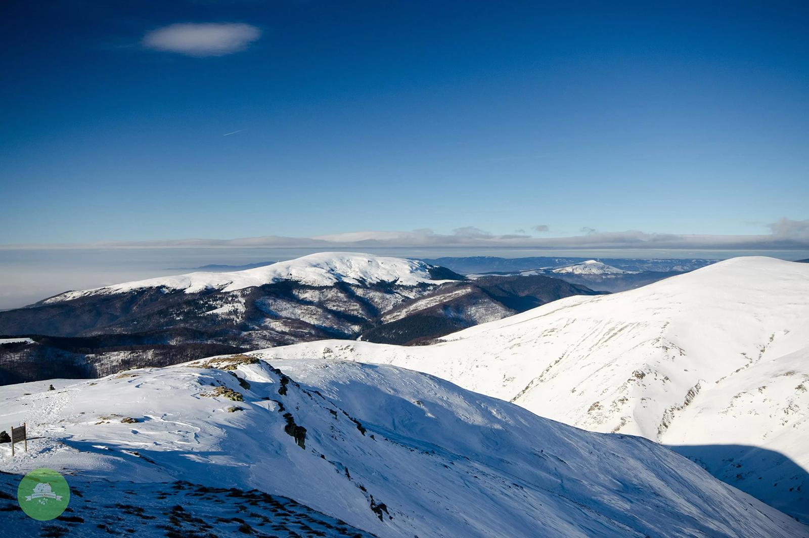 Vedere spre Muntele Mic - AmazingRomania